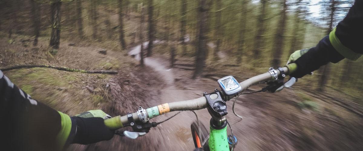Detalle Bicicleta